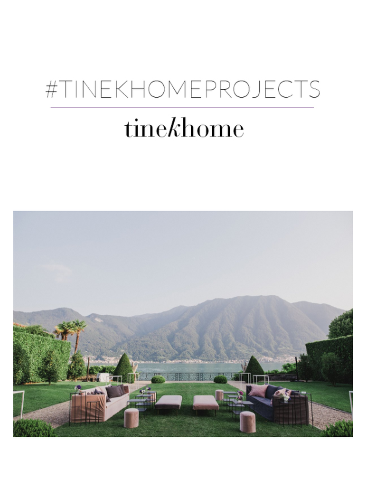 tinekhome projects - hotels, showrooms and restaurant in Europe