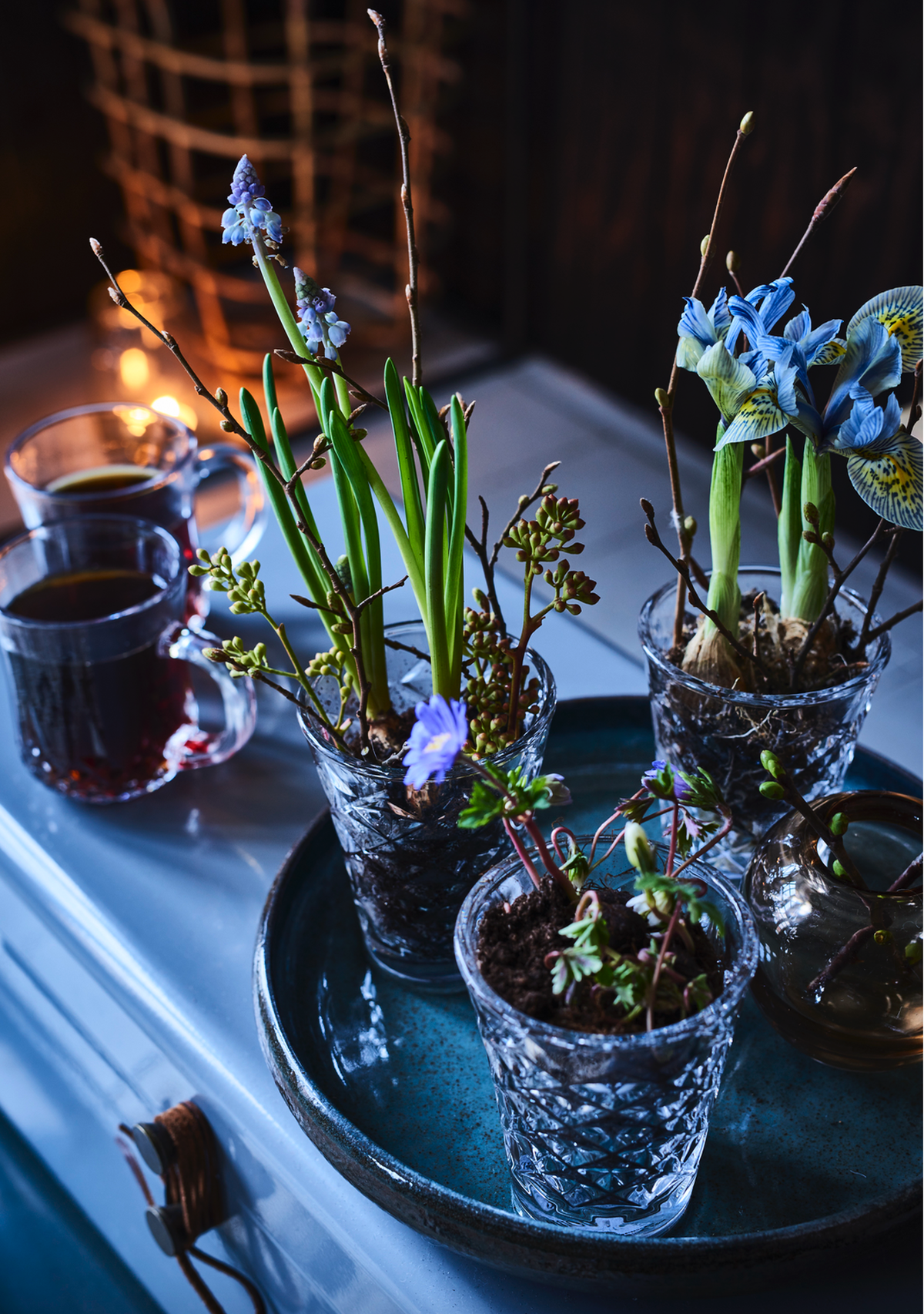 Pernille Albers - Nick Degn Fotografi Isabellas magasin - decorate with flowers and nordic design